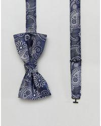 Jack & Jones - Printed Bow Tie - Lyst