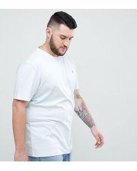 Original Penguin - Big & Tall Small Logo Crewneck Slim Fit T-shirt In Light Blue - Lyst
