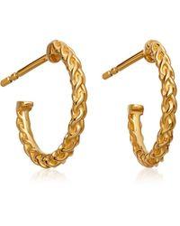 Astley Clarke - Mini Spiga Hoop Earrings - Lyst