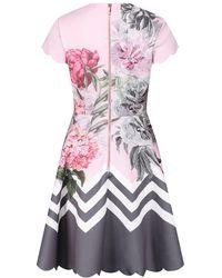 Ted Baker - Haiilie Palace Gardens Ruffle Skater Dress (dusky Pink) Women's Dress - Lyst