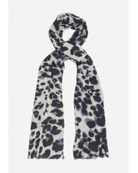 Lily and Lionel - Painted Leopard Grey Scarf - Lyst