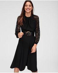 Tara Jarmon - Black Leopard Lace Dress - Lyst