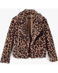 Azalea - Leopard Notched Collar Crop Coat - Lyst