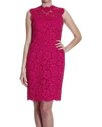 Valentino Dress Creweck Sleeveless Lace - Lyst