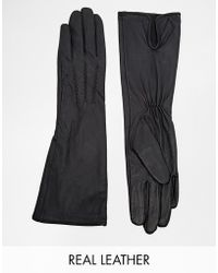 Oasis - Scallop Long Leather Glove - Lyst