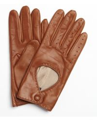 Portolano Tobacco Leather Snap Perforated Driving Gloves - Lyst