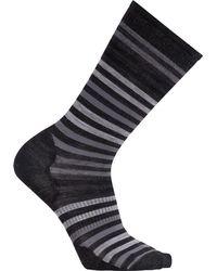 Smartwool - Spruce Street Crew Sock - Lyst