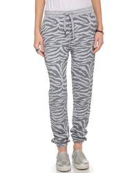 Zoe Karssen Tiger Print Sweatpants - Grey Heather - Lyst