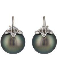 Samira 13 - Australian Pearl Earrings - Lyst