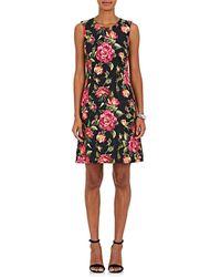 Dolce & Gabbana - Rose-print Cotton - Lyst