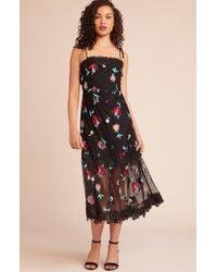 BB Dakota - Let's Dance Dress - Lyst