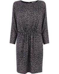Oasis Animal Tunic Dress - Lyst