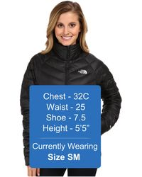 The North Face Black Thunder Jacket - Lyst