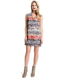 Cynthia Steffe Mixed Floral Shift Dress - Lyst