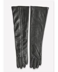 Bebe - Studded Leather Gloves - Lyst