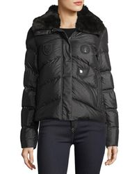 Post Card - Shiny Quilted Puffer Logo Patch Jacket W/ Fur Trim - Lyst