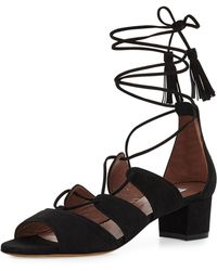 Tabitha Simmons | Isadora Suede Lace-up Sandal | Lyst