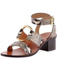 207f0128dfd Lyst - Chloé Women s Rony Leather T-strap Sandals in Black