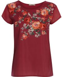 Oasis Rose Placement Tshirt - Lyst