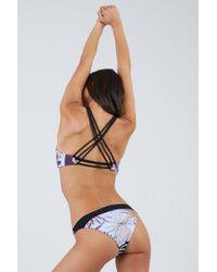 Maaji - Hidden Valley Moderate Bikini Bottom - Floral Stripe Print - Lyst