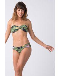 Triya - Bebel Bandeau Bikini Top - Bananeira - Lyst