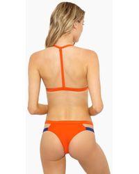 Aila Blue - Dean Side Cut Out Bikini Bottom - Pomelo Lapis - Lyst