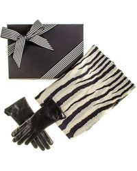 Black.co.uk - Rabbit Fur Scarf And Rabbit Fur Lined Leather Gloves Gift Set - Lyst