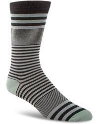 Cole Haan - Skater Stripe Crew Socks - Lyst