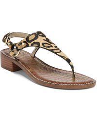 4bca578e90544 Sam Edelman - Women s Jude Leopard Print Calf Hair Thong Sandals - Lyst