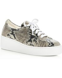 Robert Clergerie - Women's Tasket Snake Embossed Leather Lace Up Platform Sneakers - Lyst