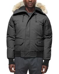 Canada Goose - Chilliwack Fur - Trimmed Down Bomber Jacket - Lyst