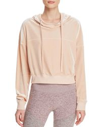 Alo Yoga - Velour Cropped Hooded Sweatshirt - Lyst