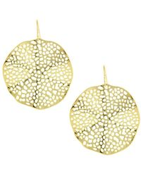 Sparkling Sage - 14k Plated Cut-out Wavy Circle Earrings - Lyst
