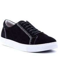 Robert Graham - Calle Suede Trainer - Lyst