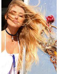 Natalie B. Jewelry - La Femme Velvet Choker Necklace In Blue - Lyst