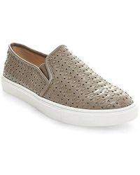 40fa8eabc453ce Lyst - Steve Madden Women s Buhba Fashion Sneaker in Brown