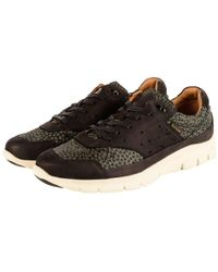 9ba95d0a26cea7 PS by Paul Smith - Paul Smith Black green Leopard Print Trainers - Lyst
