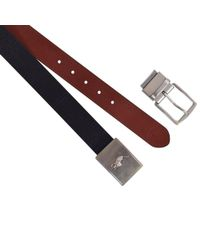 Polo Ralph Lauren - Black/brown Belt Gift Set - Lyst