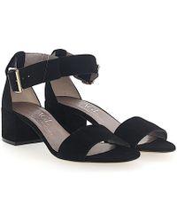 Agl Attilio Giusti Leombruni - Sandals D631010 Suede Black - Lyst