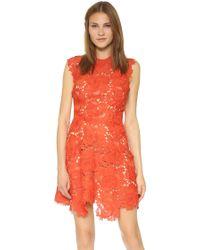Catherine Deane   Elina Lace Sleeveless Dress - Sunset   Lyst