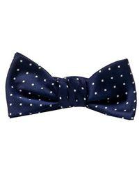 Ralph Lauren Blue Label Polka Dots Bow Tie - Lyst
