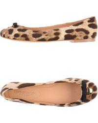 Dolce & Gabbana Ballet Flats - Lyst