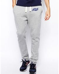 Tsptr Joggers With Logo gray - Lyst