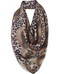 Helene Berman Animal Swirl Print Silk Square Scarf - Lyst