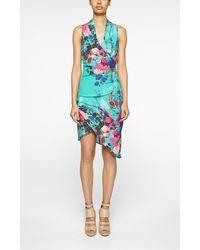 Nicole Miller Stefanie Botanic Dress multicolor - Lyst