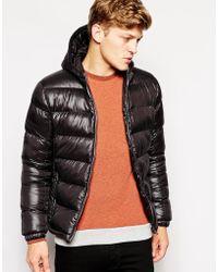 Brave Soul Padded Jacket With Hood Shiny - Lyst