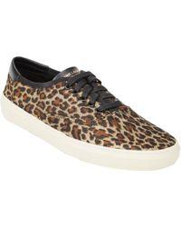 Saint Laurent Leopard Jacquard Skate Sneakers - Lyst