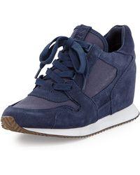 Ash Dean Ter Suede Wedge Sneaker - Lyst