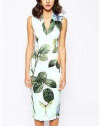 Ted Baker Midi Dress In Distinguishing Rose Print - Lyst