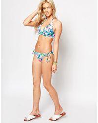 Freya | Paradise Island Underwired Padded Halter Bikini Top | Lyst